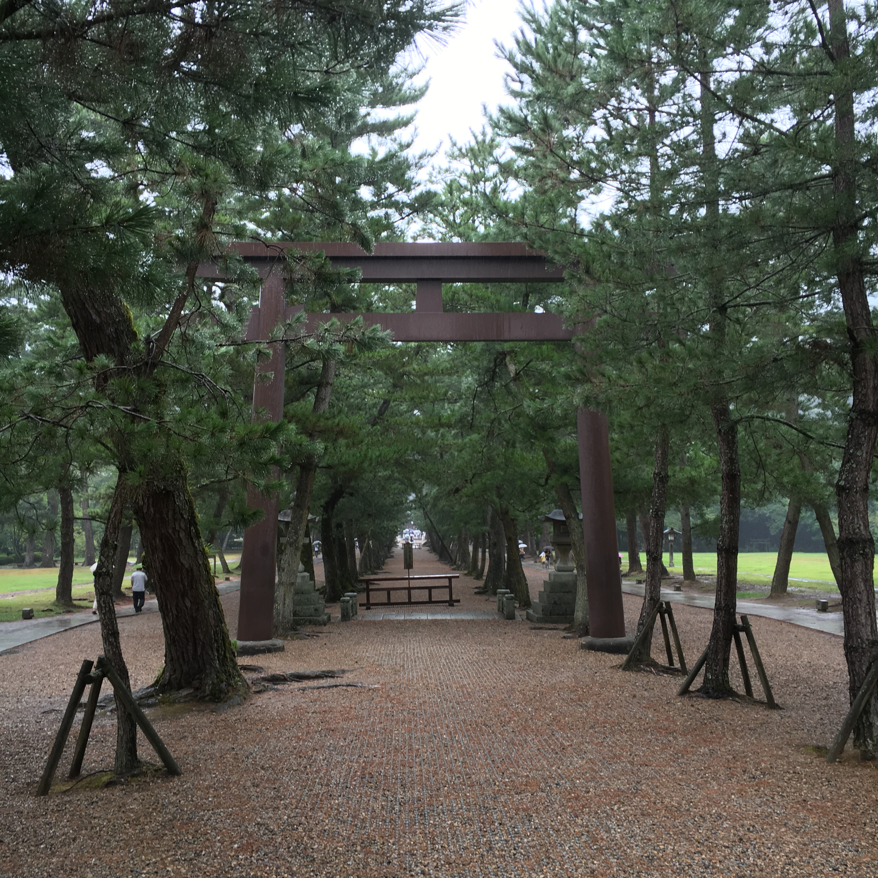 sacres pathway at Izumo Taisha lined with pine trees