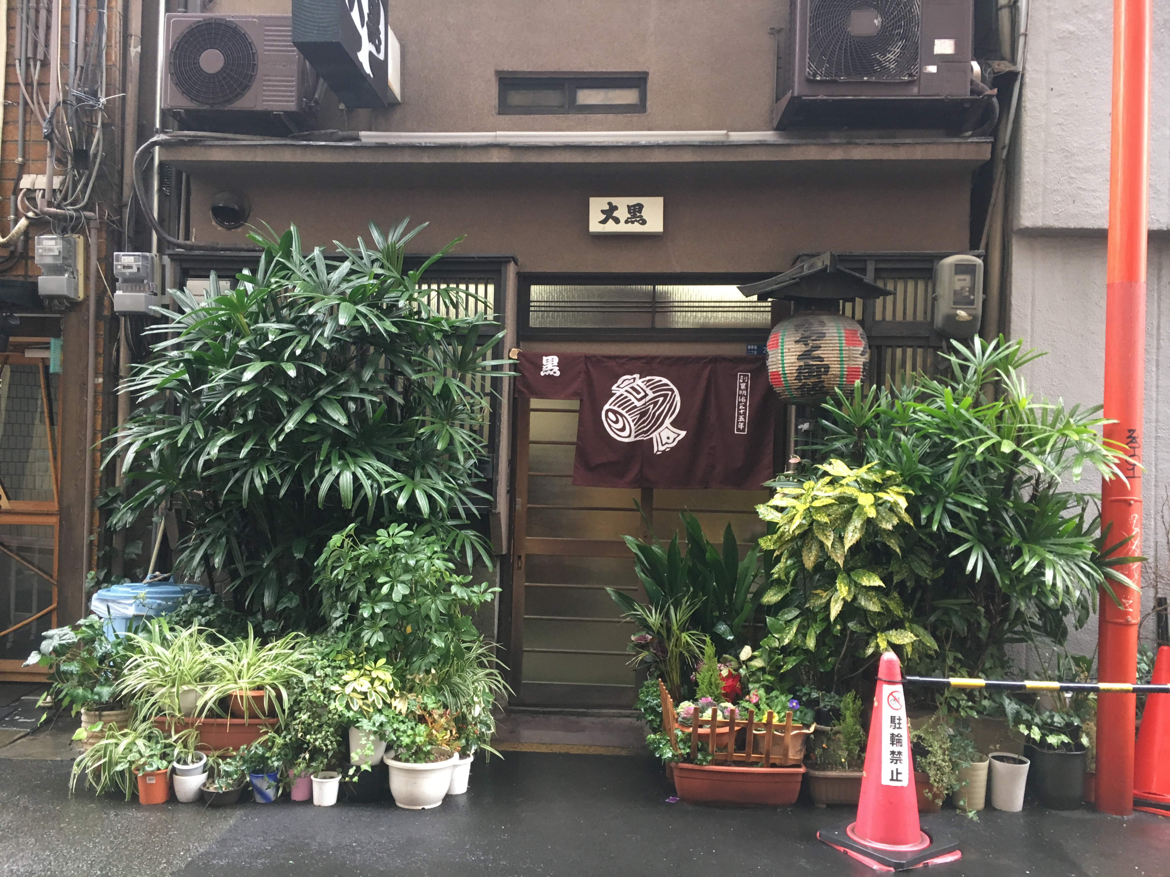 outside of a small japanese restaurant and many green plants and lantern