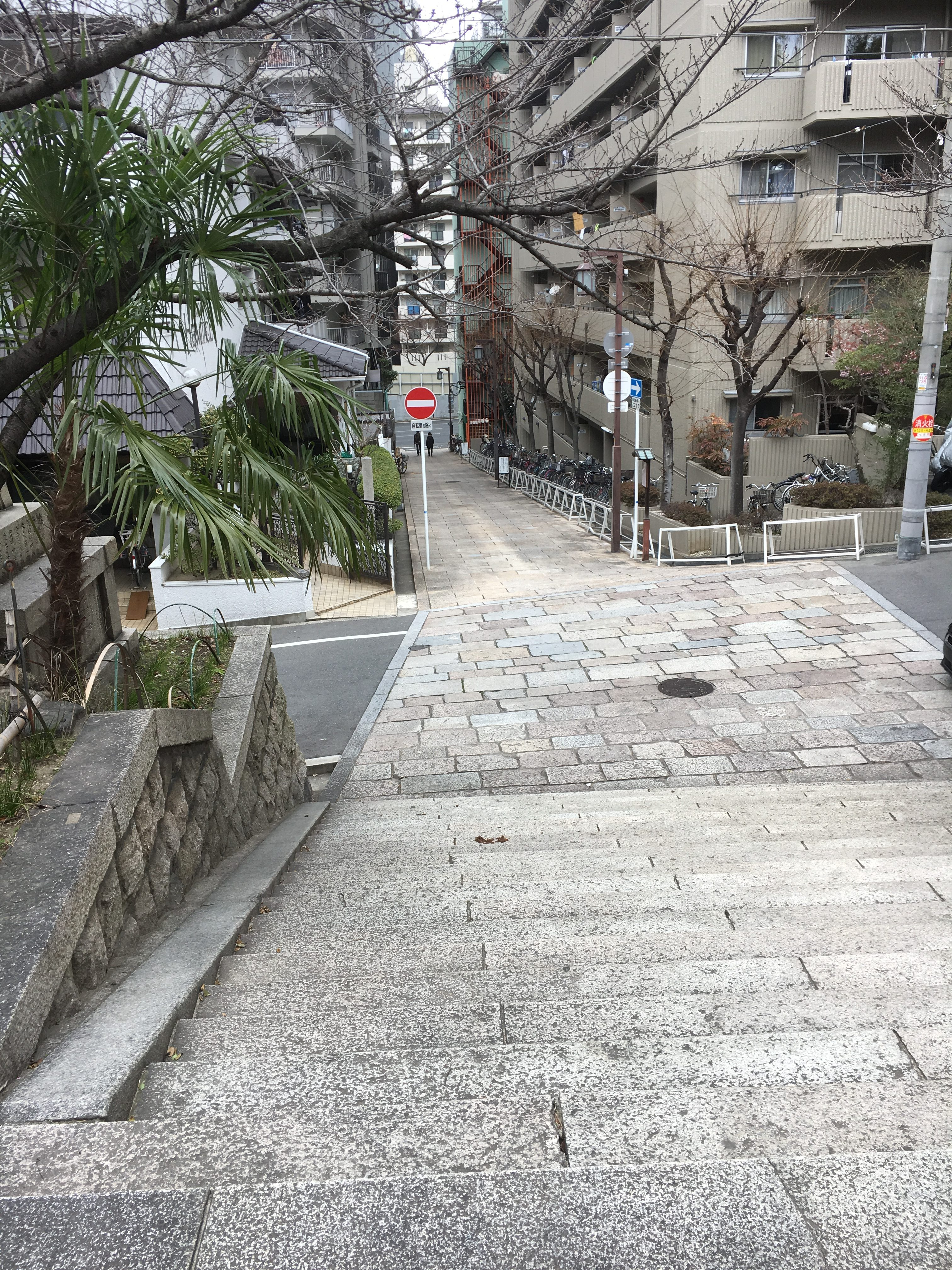 stone steps leading down a slope and nearby apartments