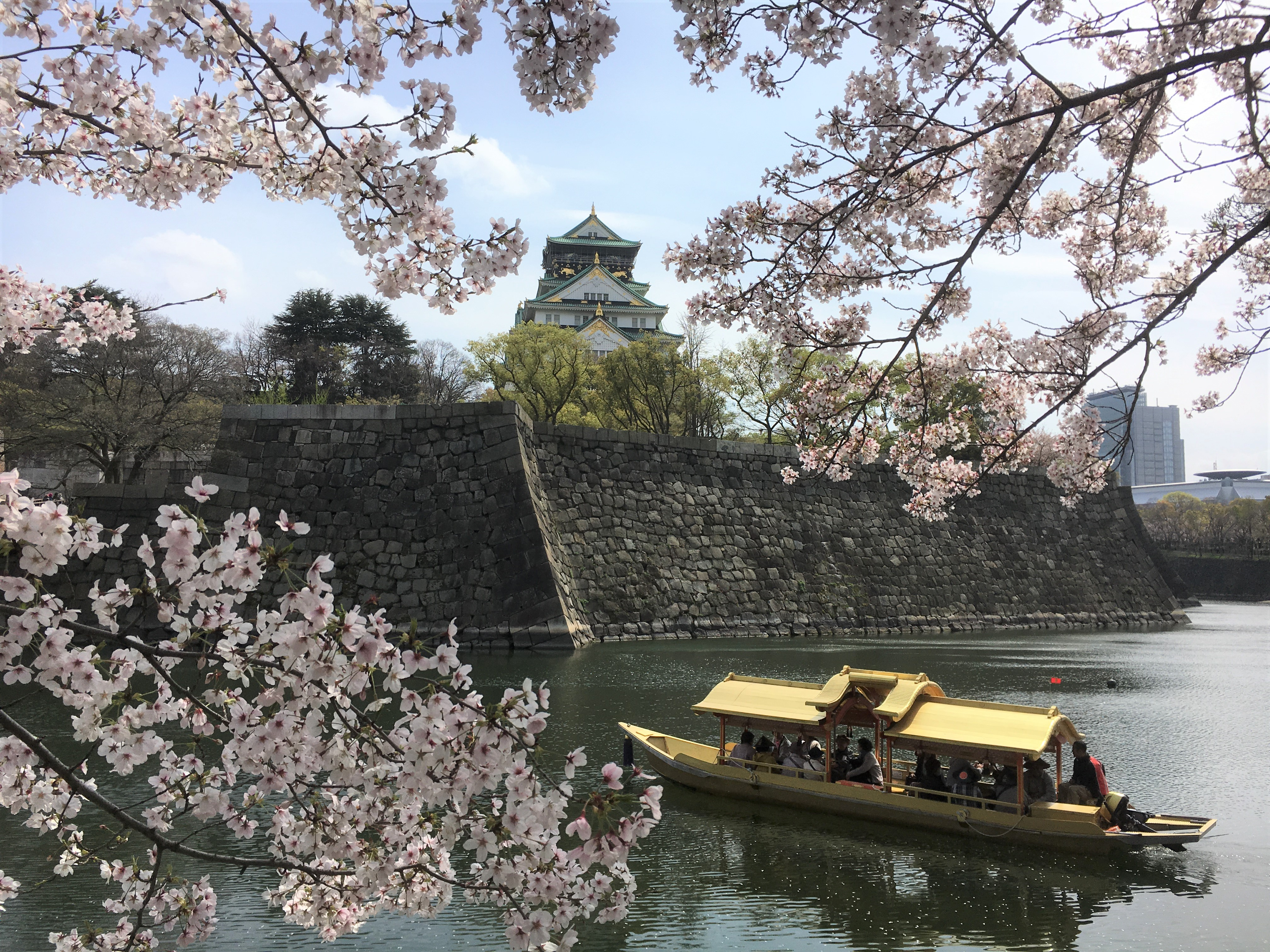 view of Osaka castle golden roofed boat and cherry blossoms
