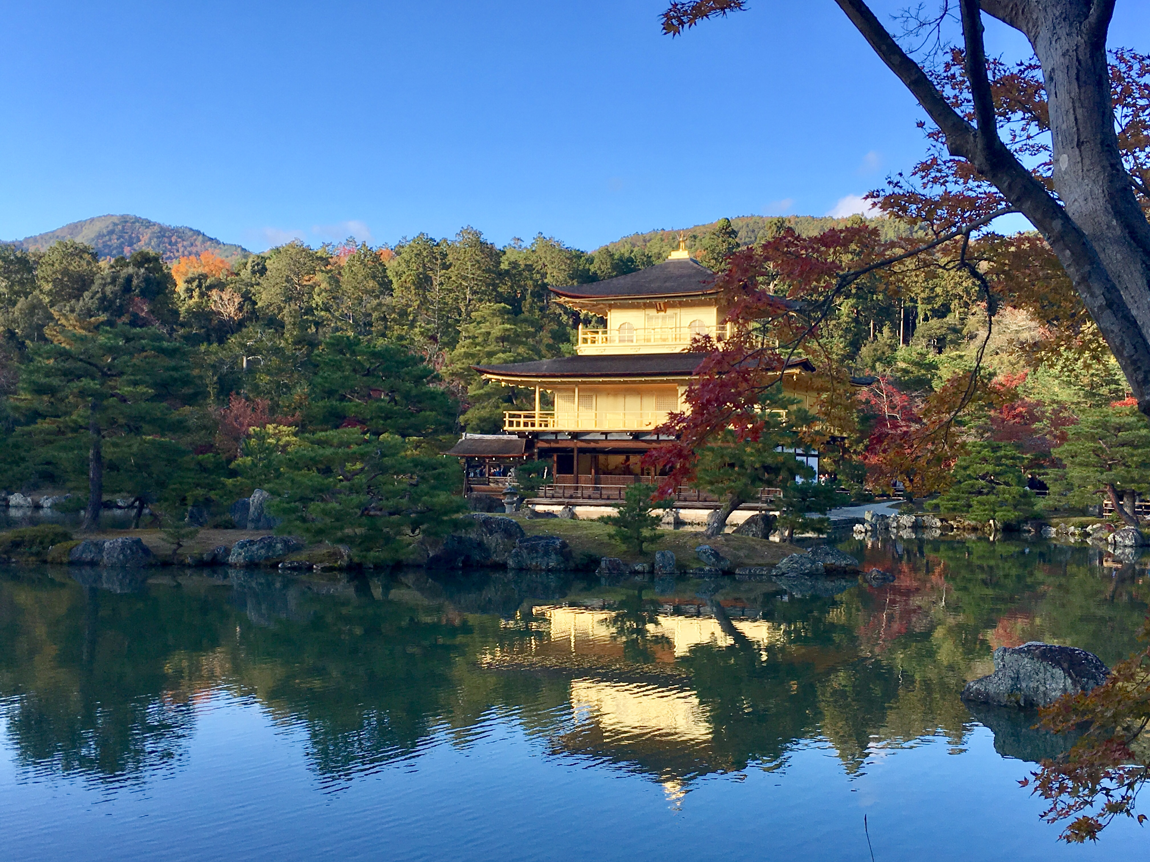Golden kinkaku-ji in the fall with reflection in pond
