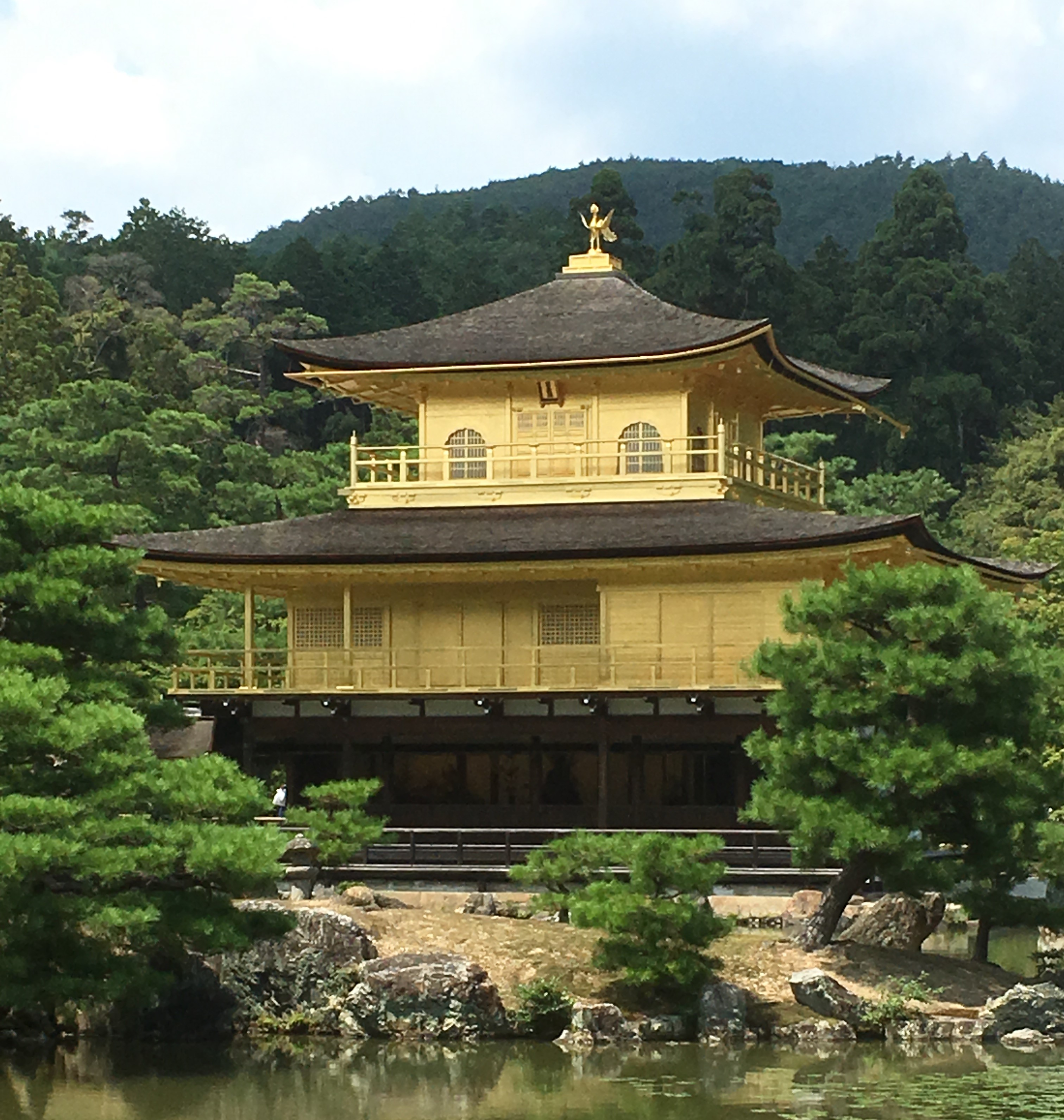 the kinkaku-ji in the summer with pine trees and view of statue