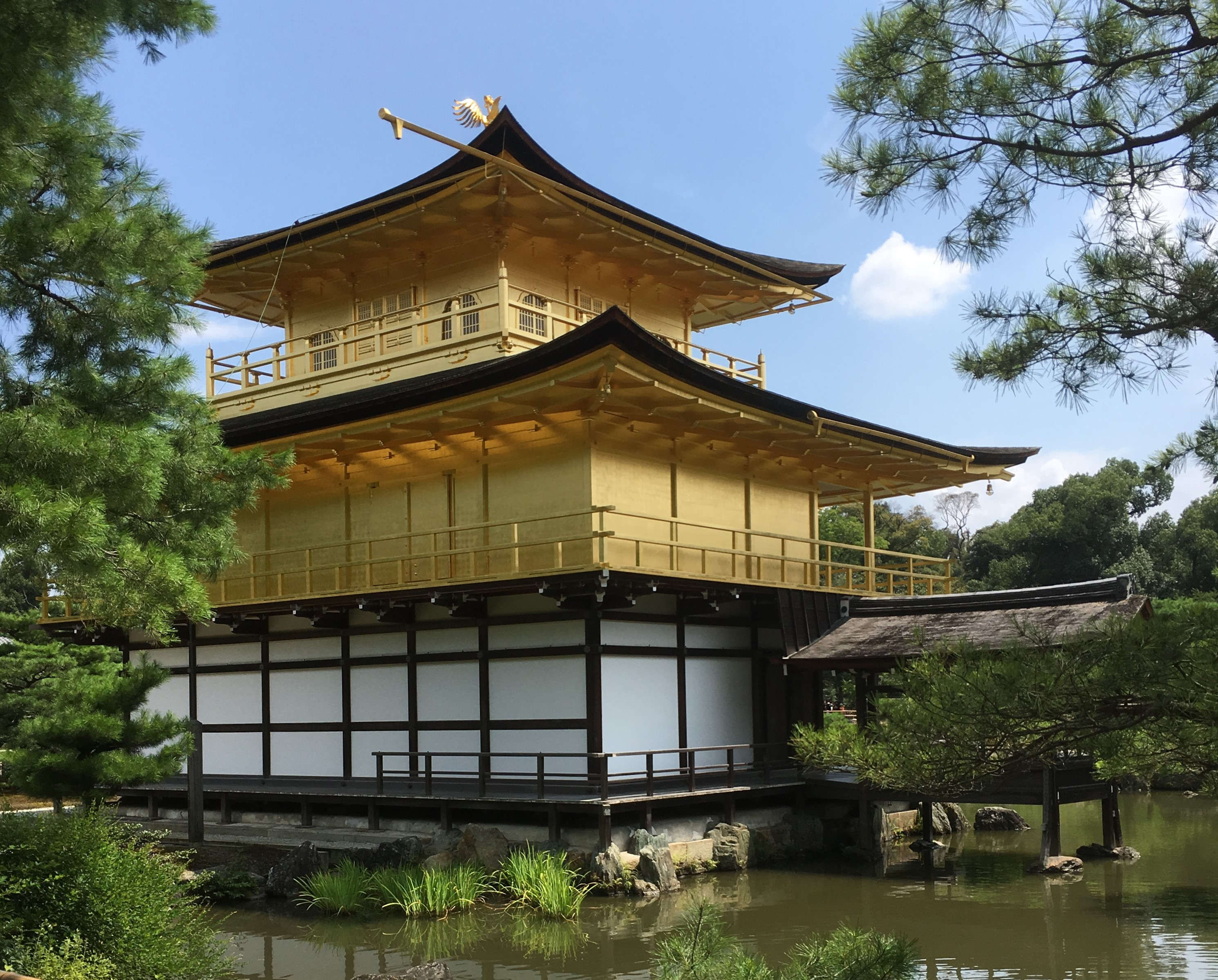 close view of the three different levels of the kinkaku-ji and pine trees