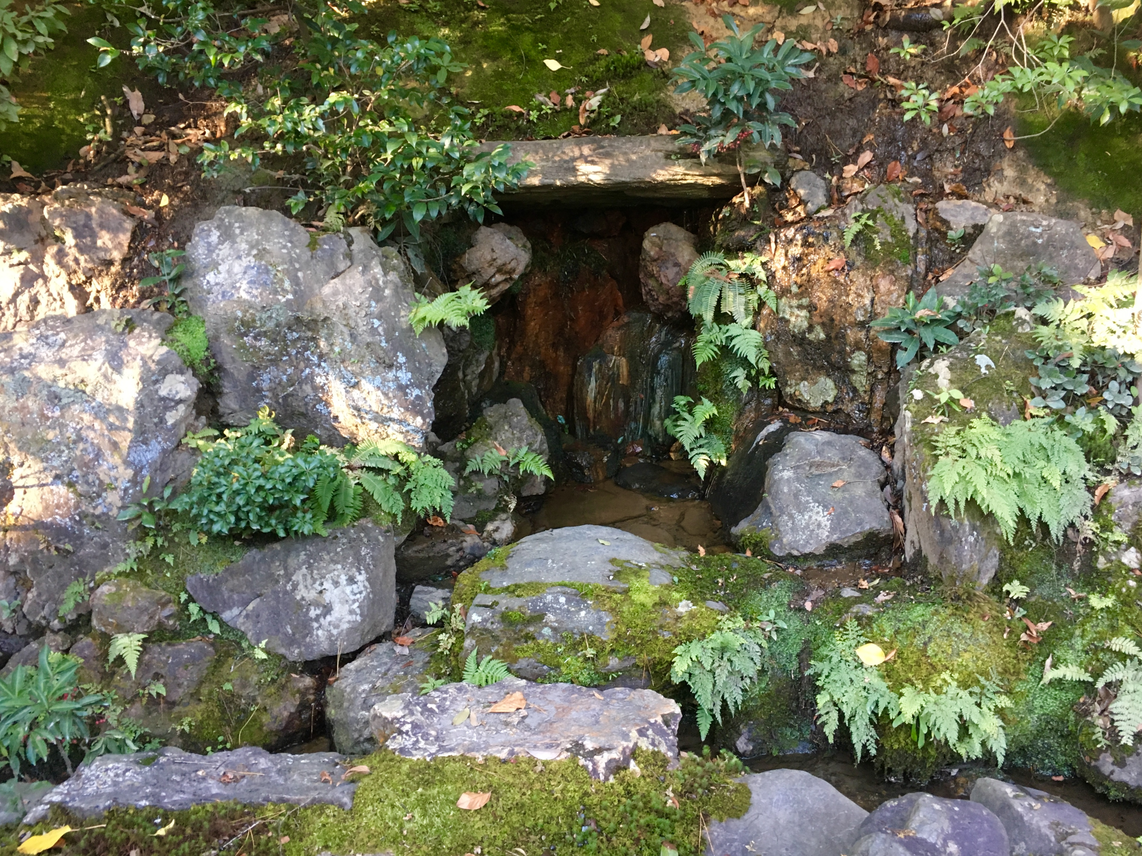small waterfall surrounded by stones moss and leaves