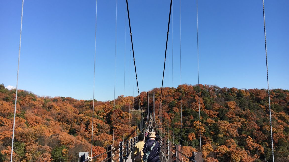 people walking across a suspension bridge surrounded by autumn leaves