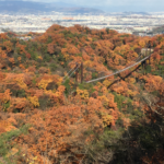 Osaka's Hidden Autumn Beauty, Hoshi no Buranko
