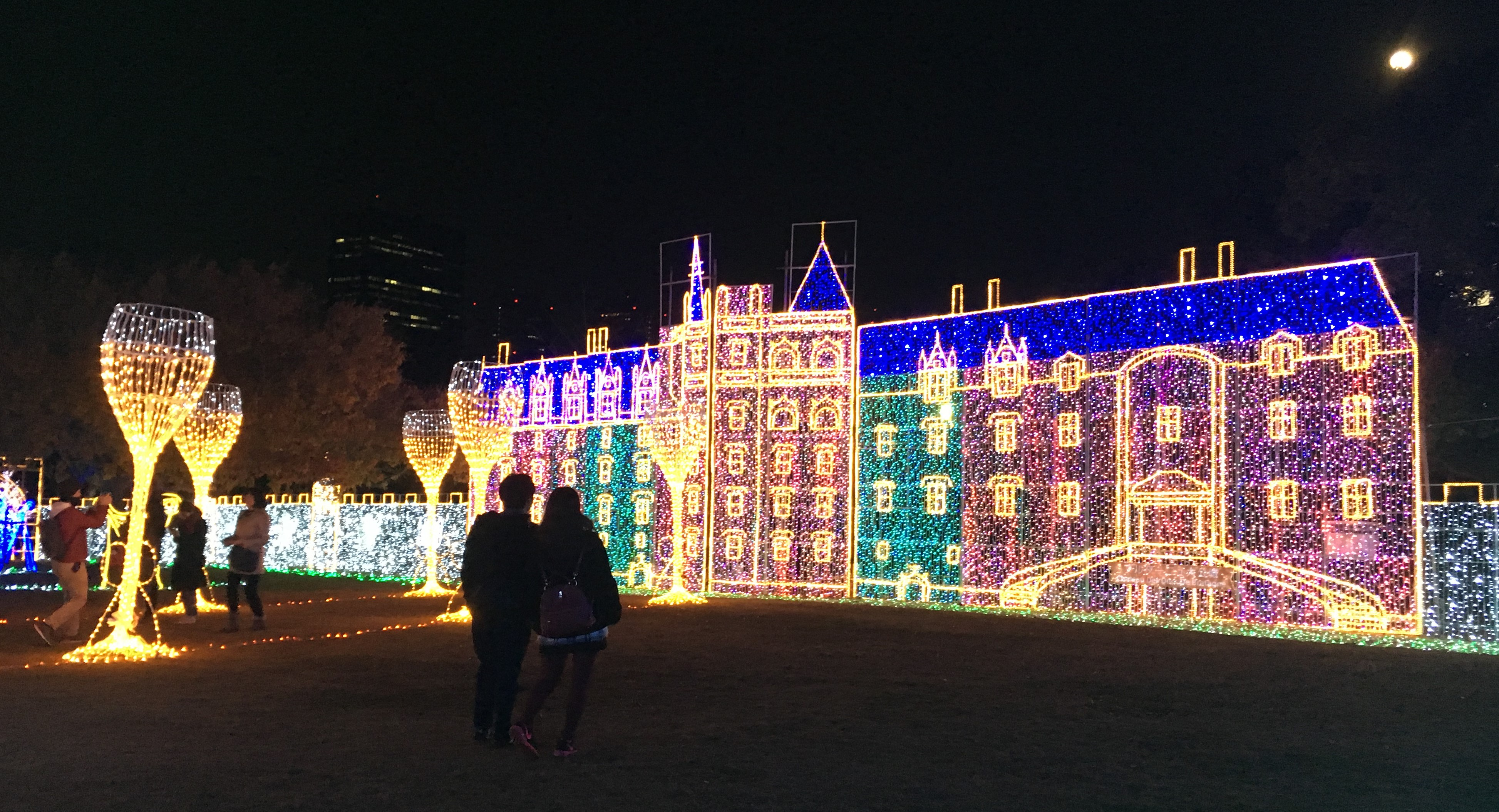 brightly colored illumination of a french castle at night