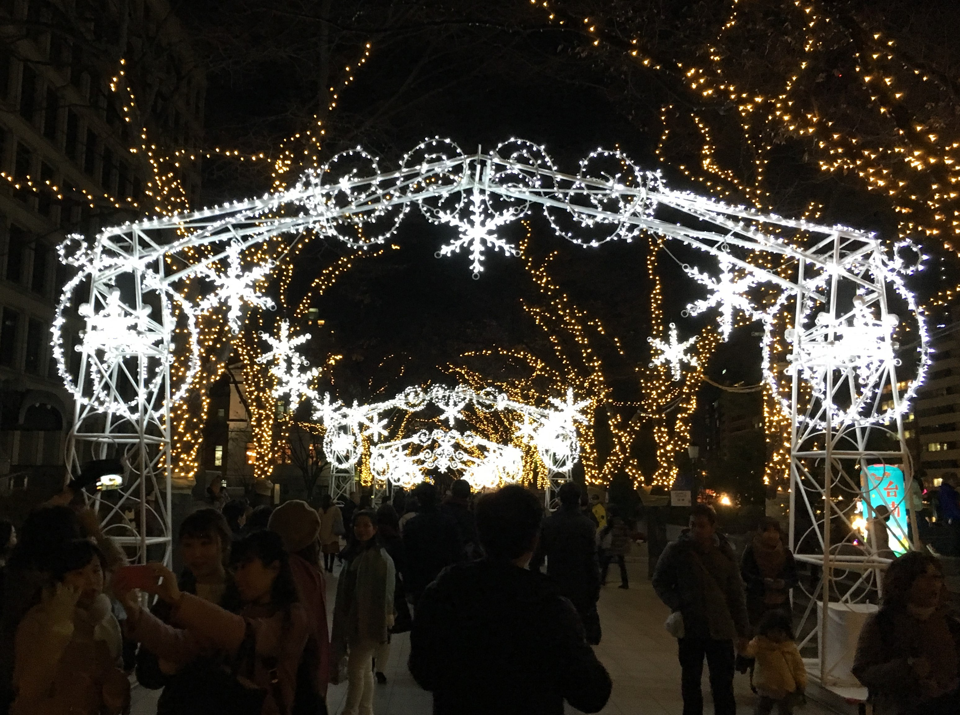 tunnel of winter themed lights