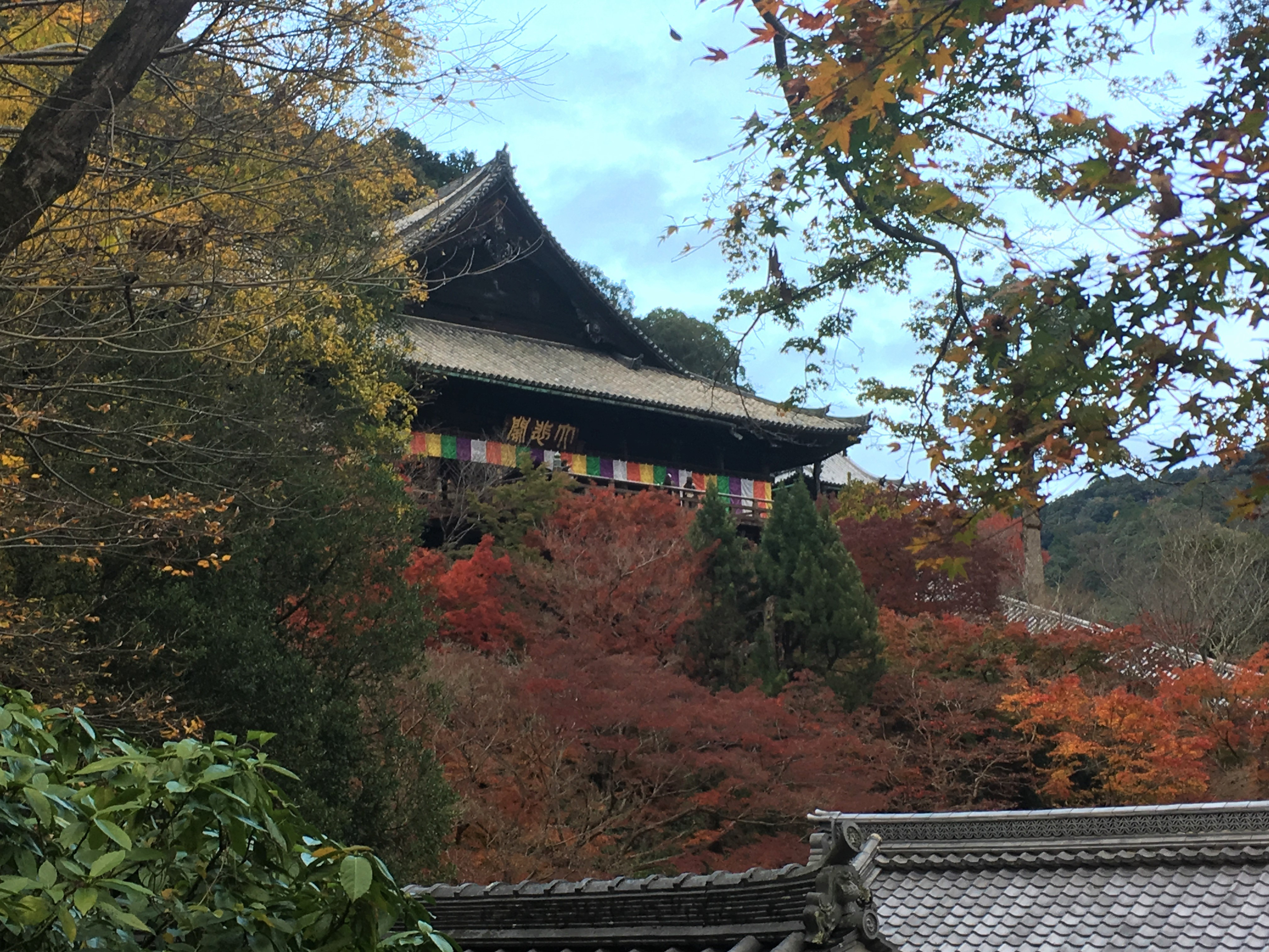 Hase-dera temple surrounded by autumn foliage