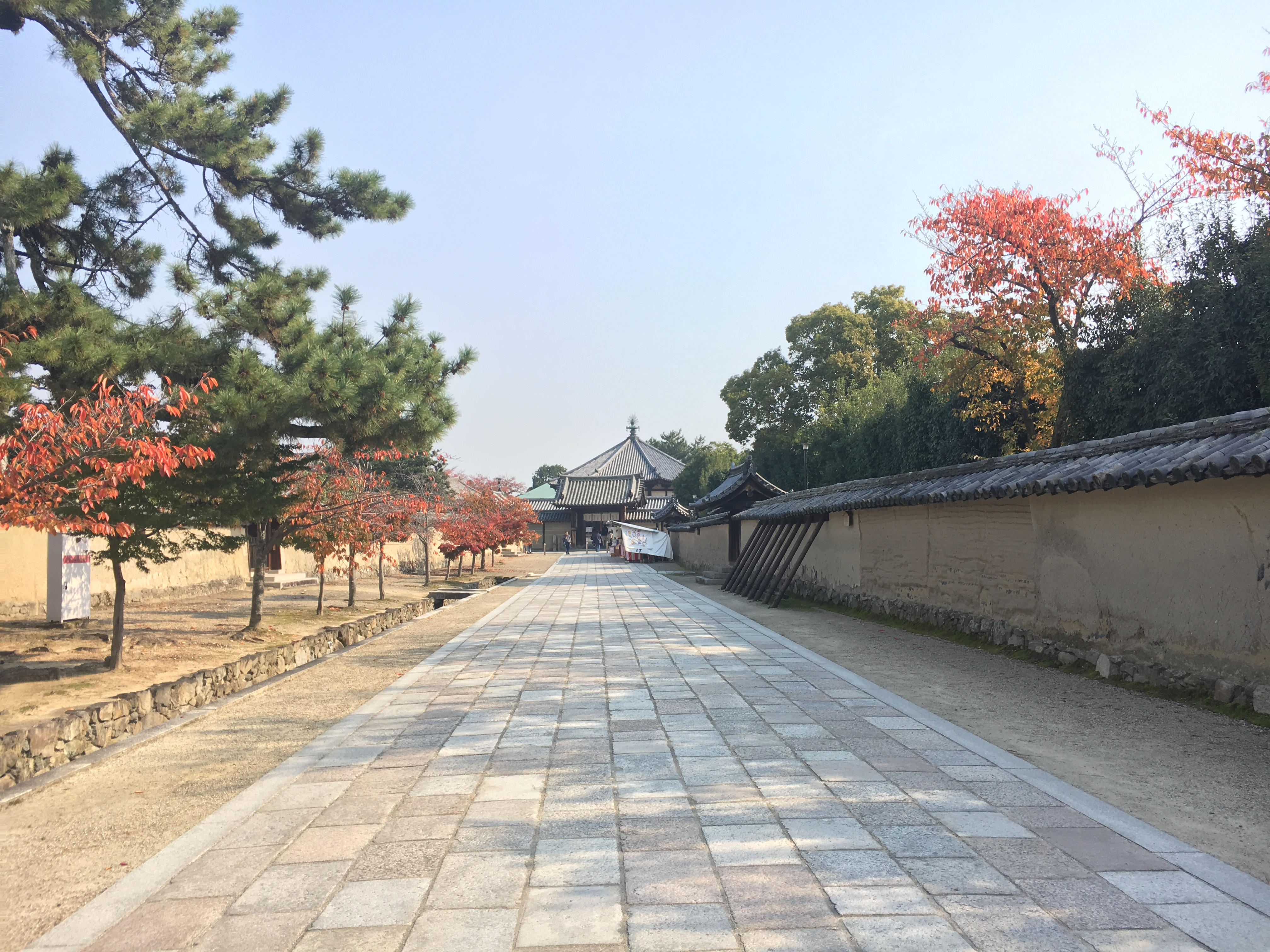 stone road at Horyu-ji temple surrounded by fall leaves