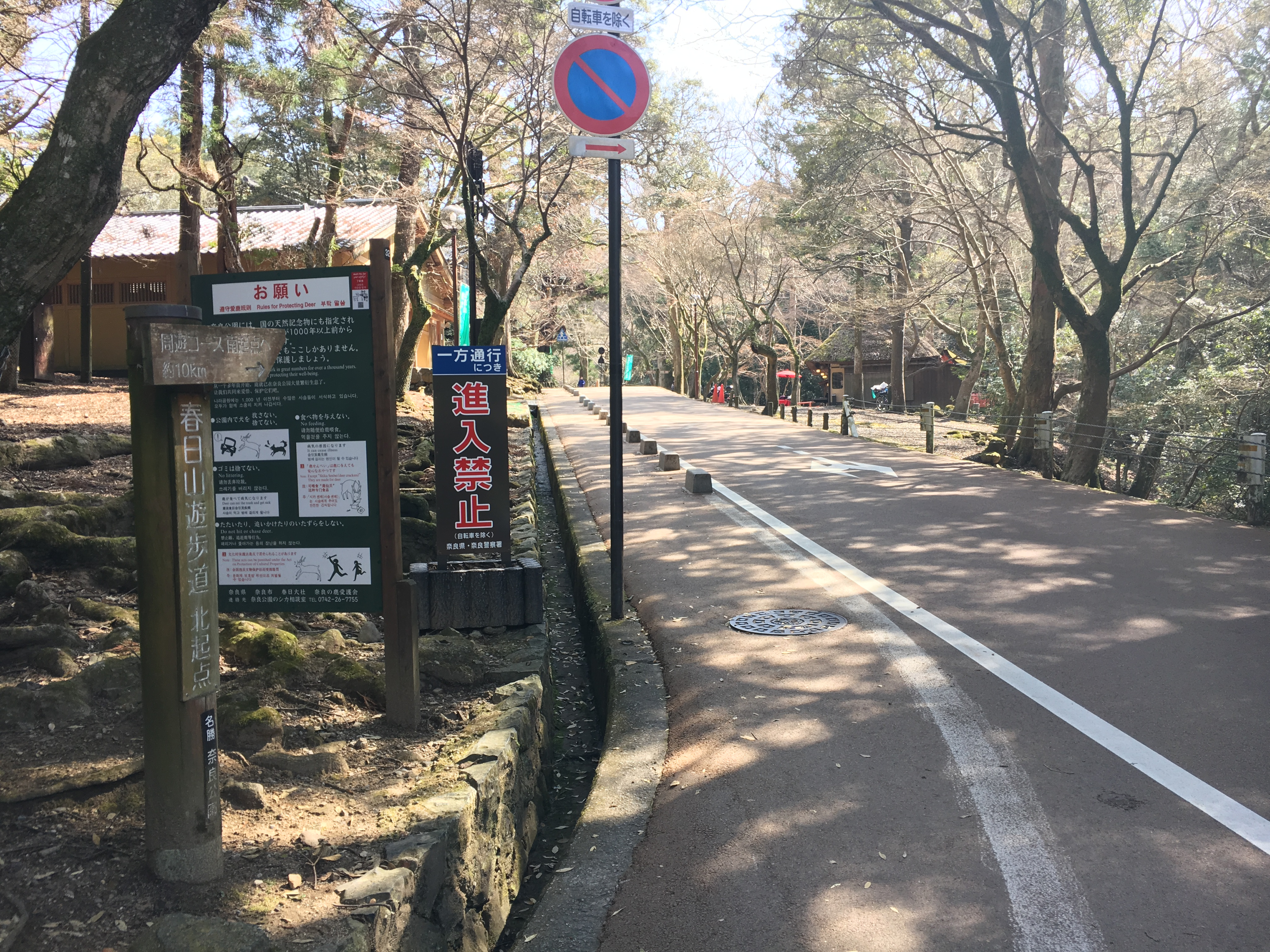 road leading to north entrance of the Kasuga Primeval forest hiking trail