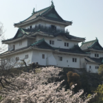 Wakayama Castle, The Castle of the Sleeping Tiger