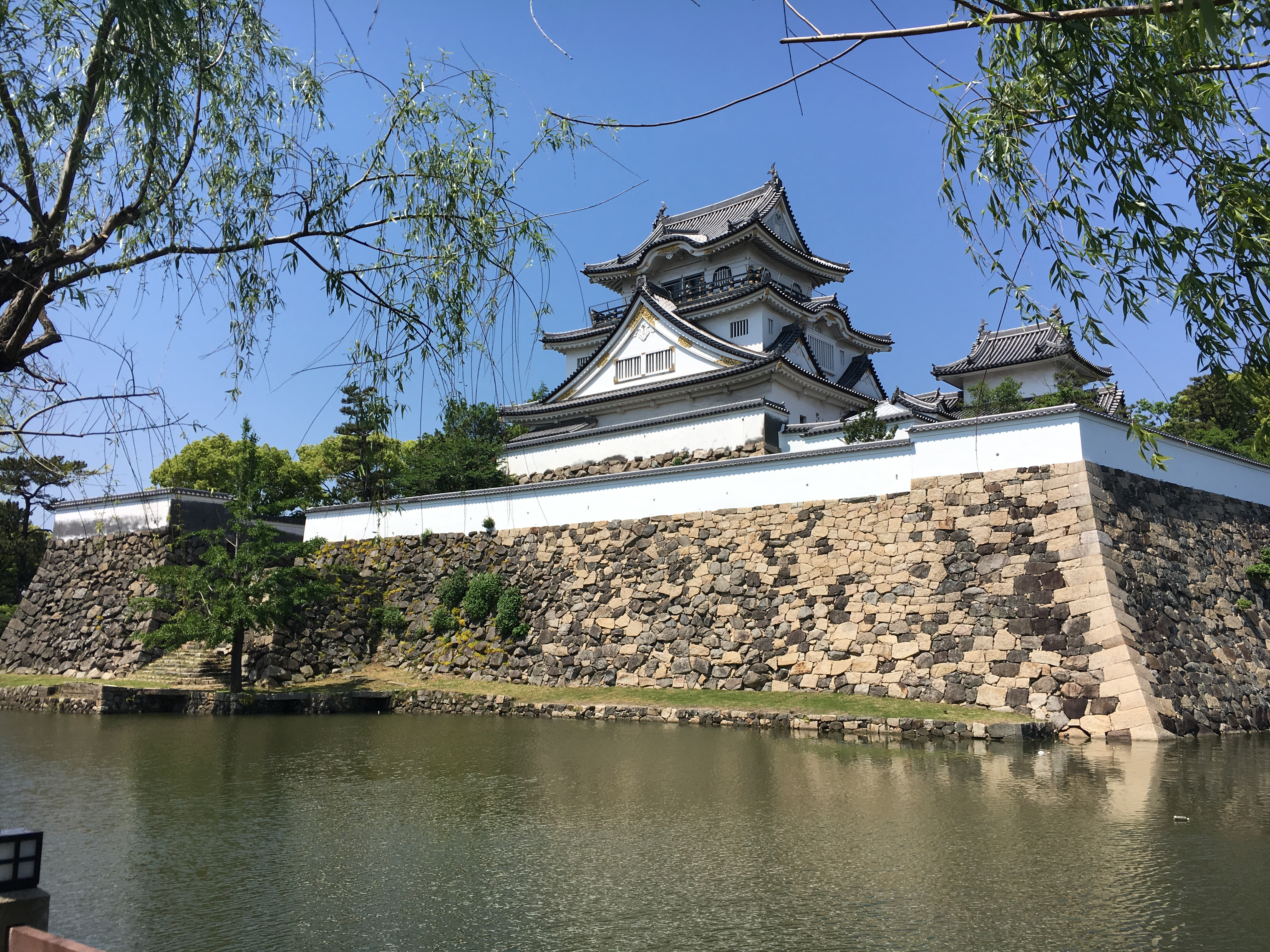 Kishiwada castle framed by willow trees