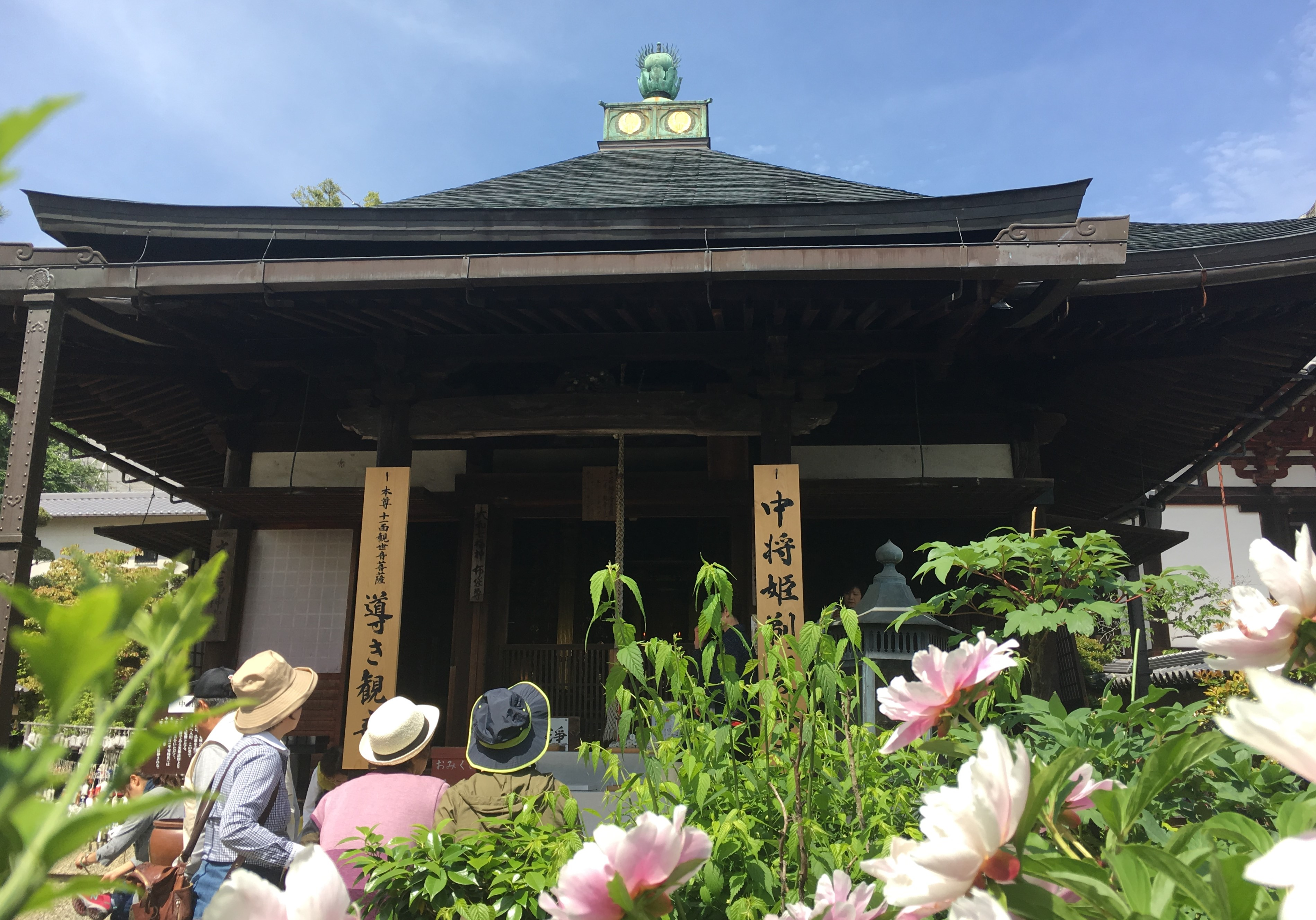 Mihatsu-do at the Nakano-bo with blooming flowers