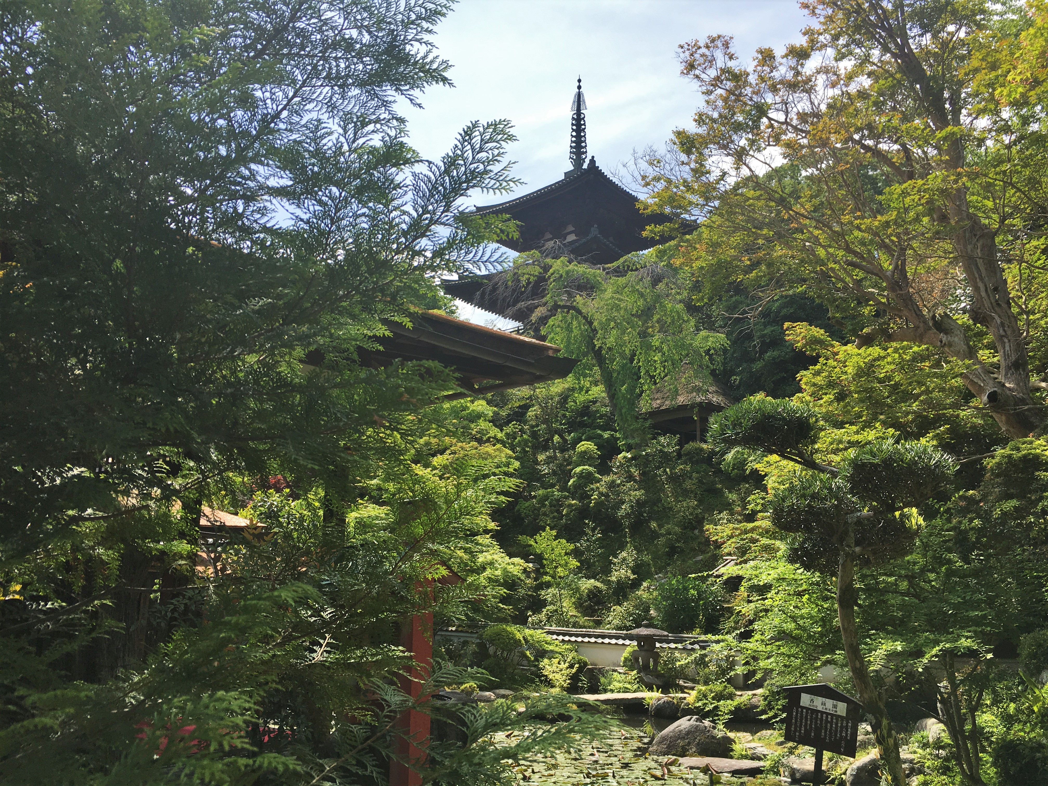 Koguen garden with the east pagoda taima-dera in background