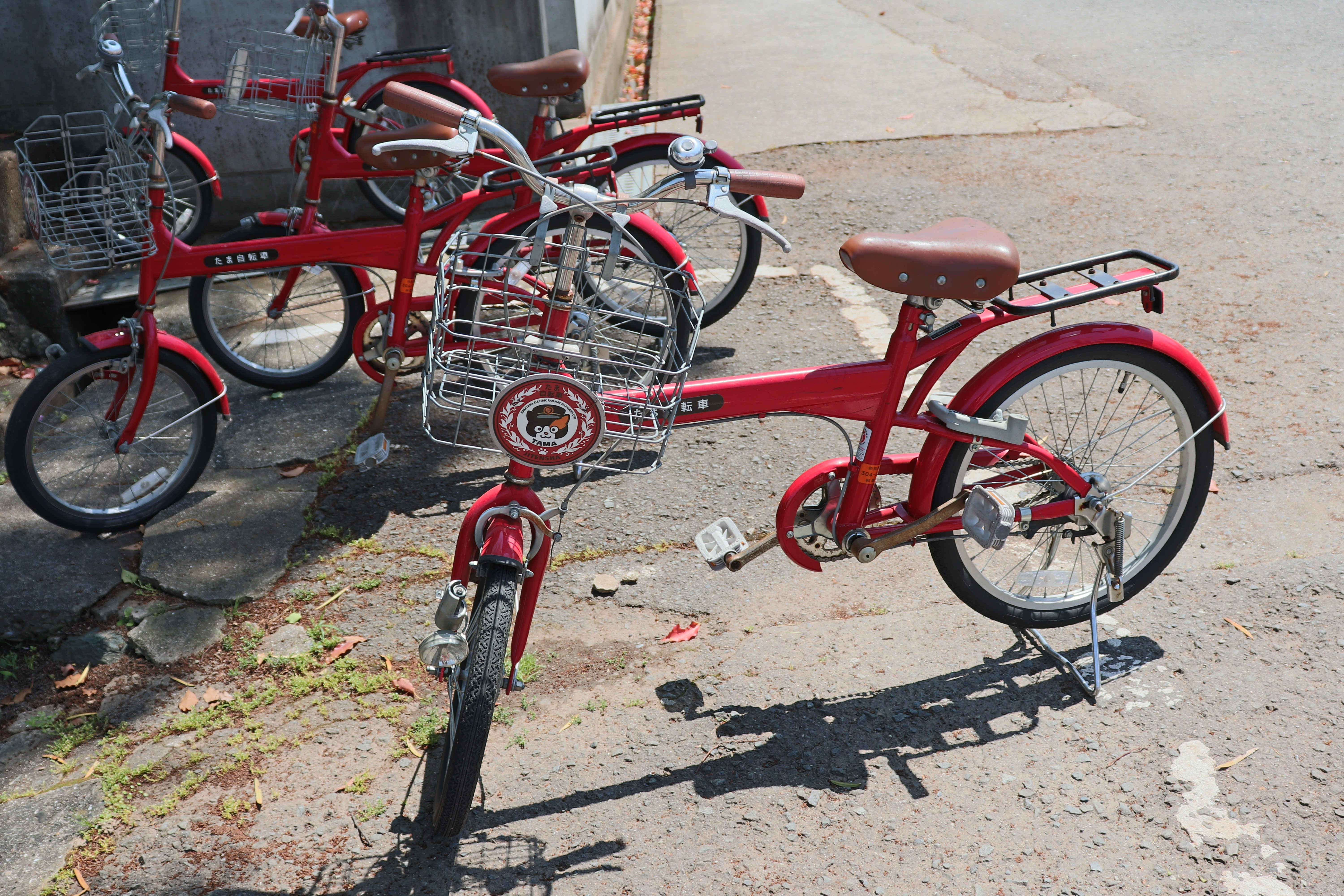 red bike featuring tama the cat
