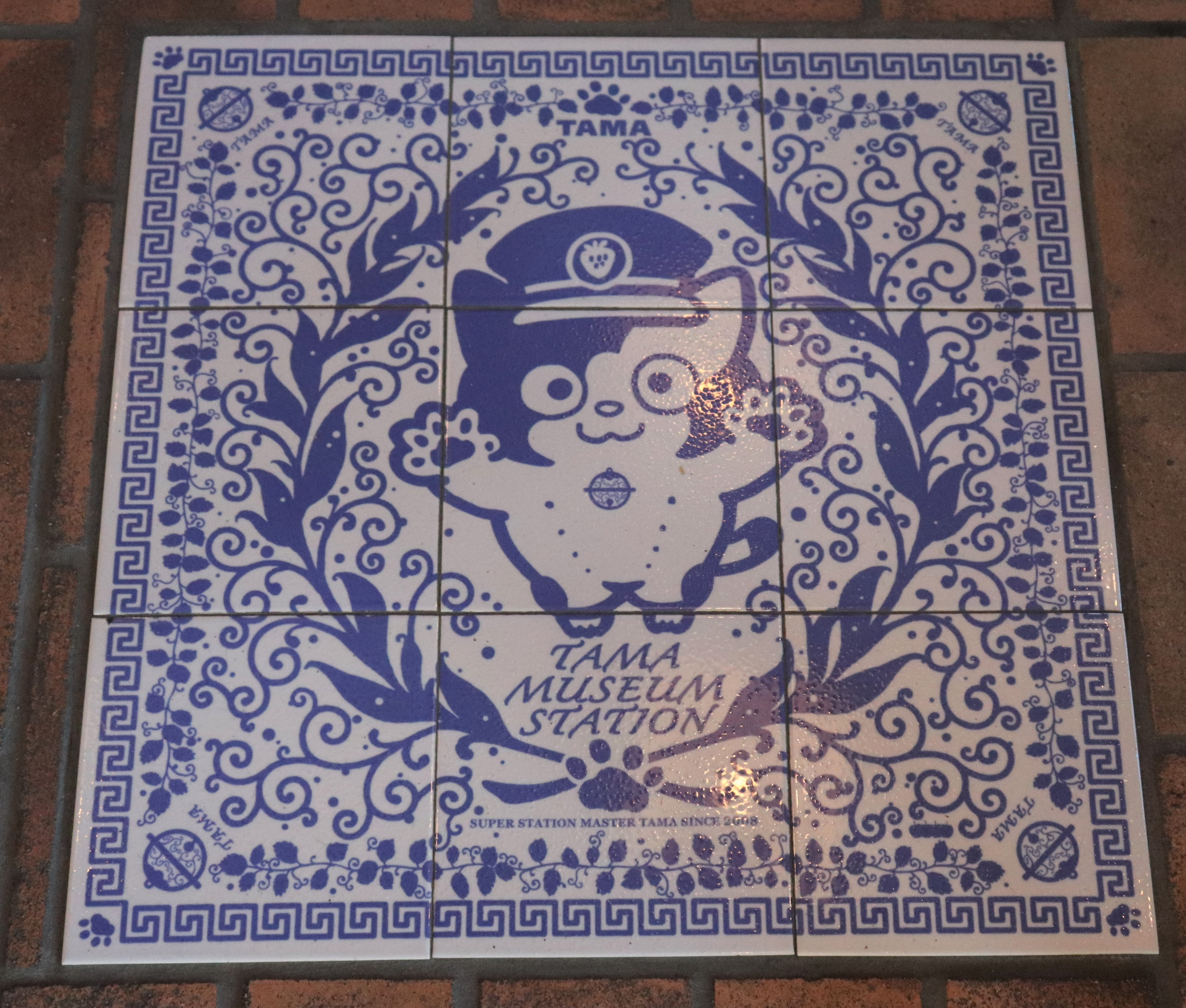 blue and white tile flooring of tama the cat