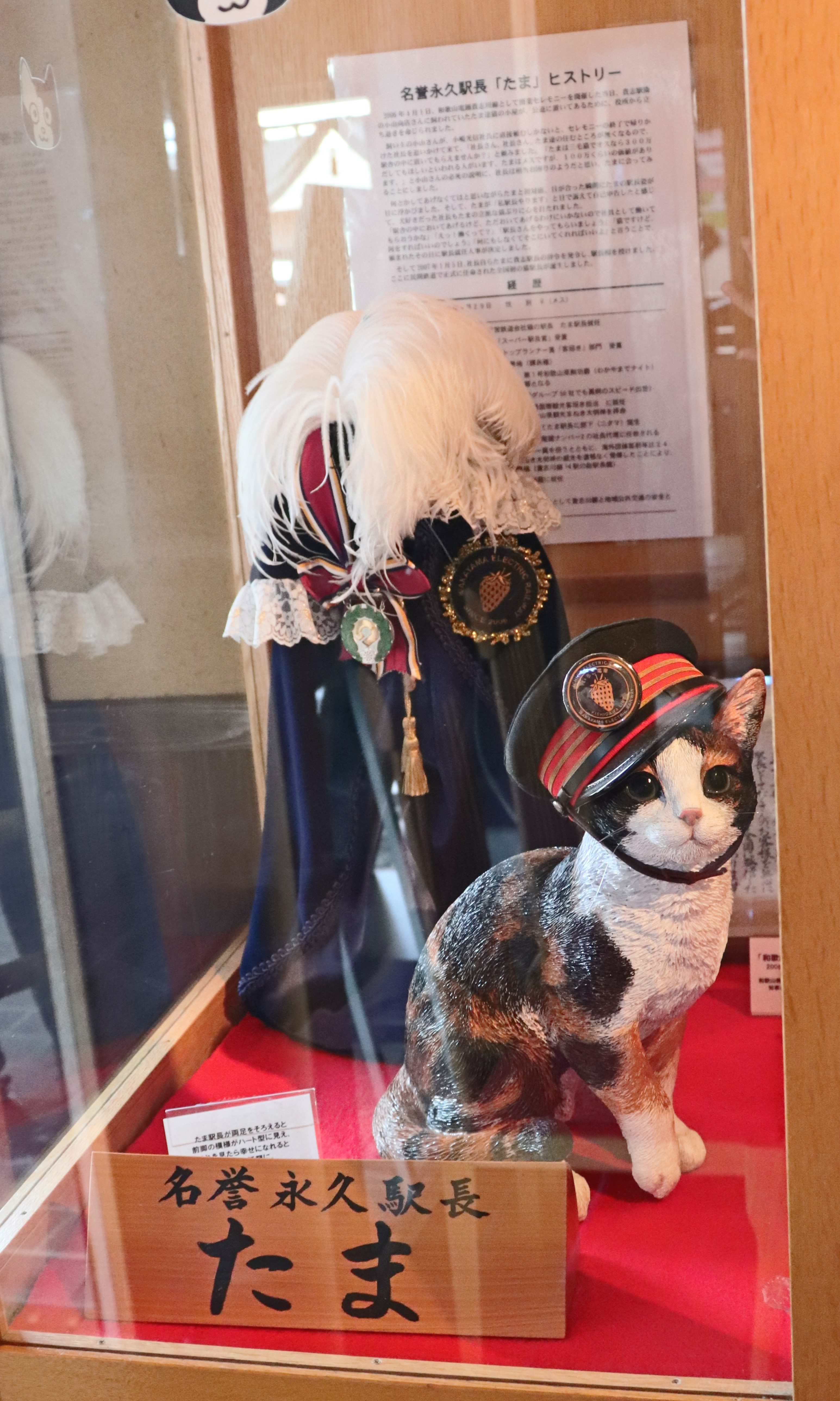 Display of Tama the cat at the Tama Cafe in Kishi Station.