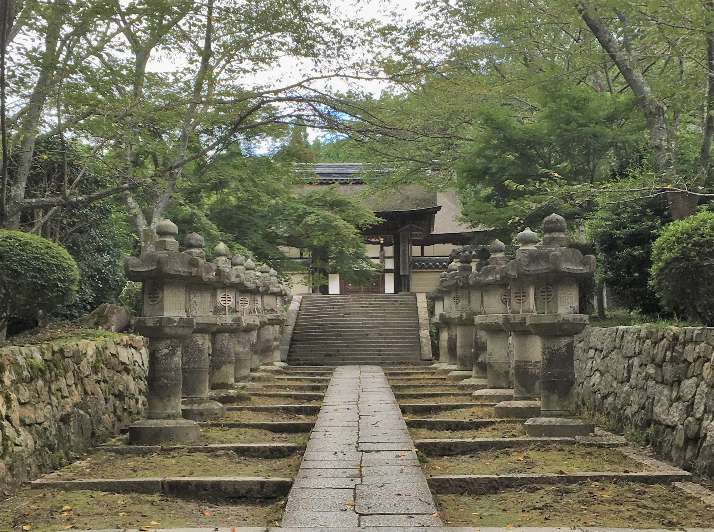stone lantern lined path to Mii-dera's To-in