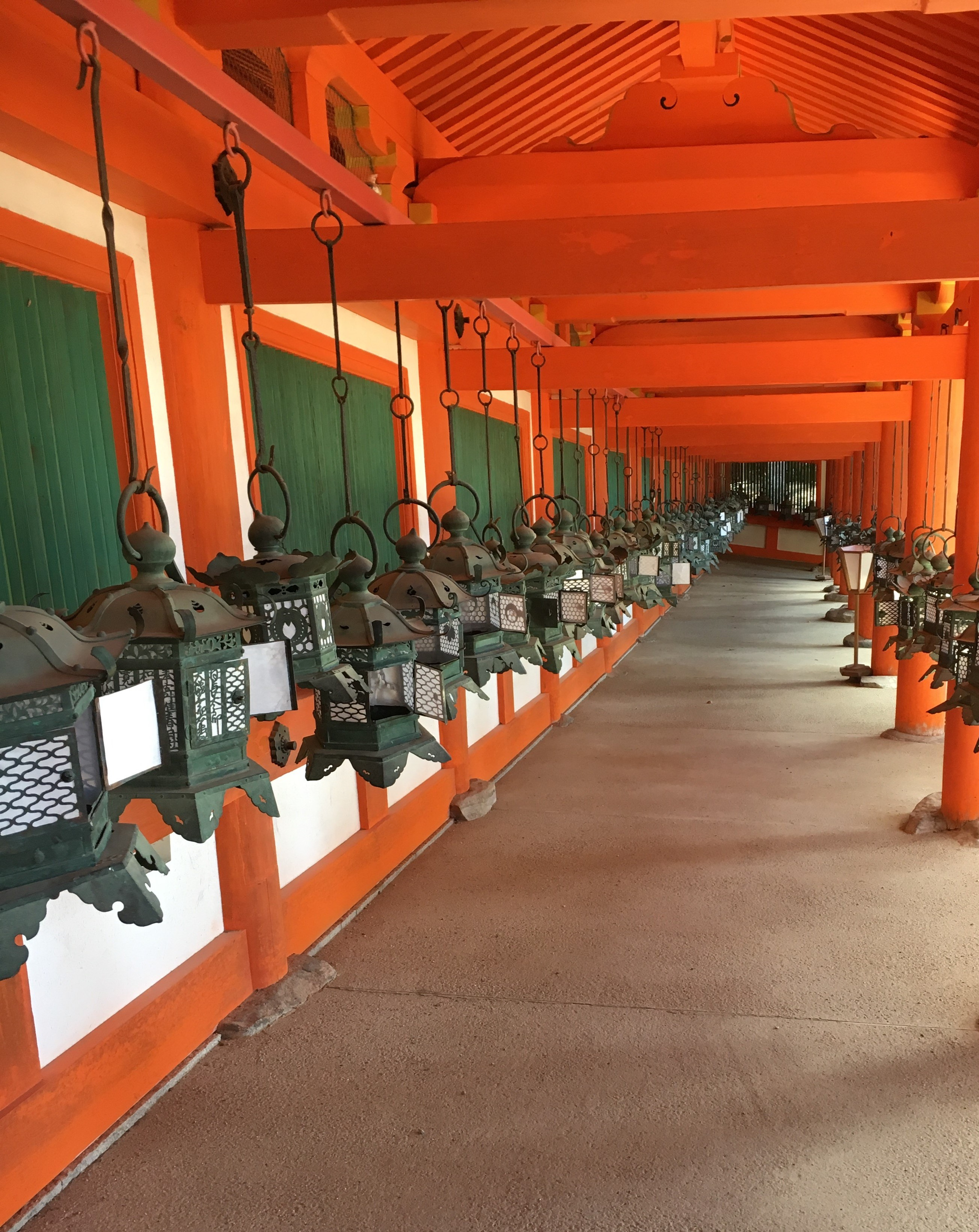 rows of lanterns at kasuga taisha