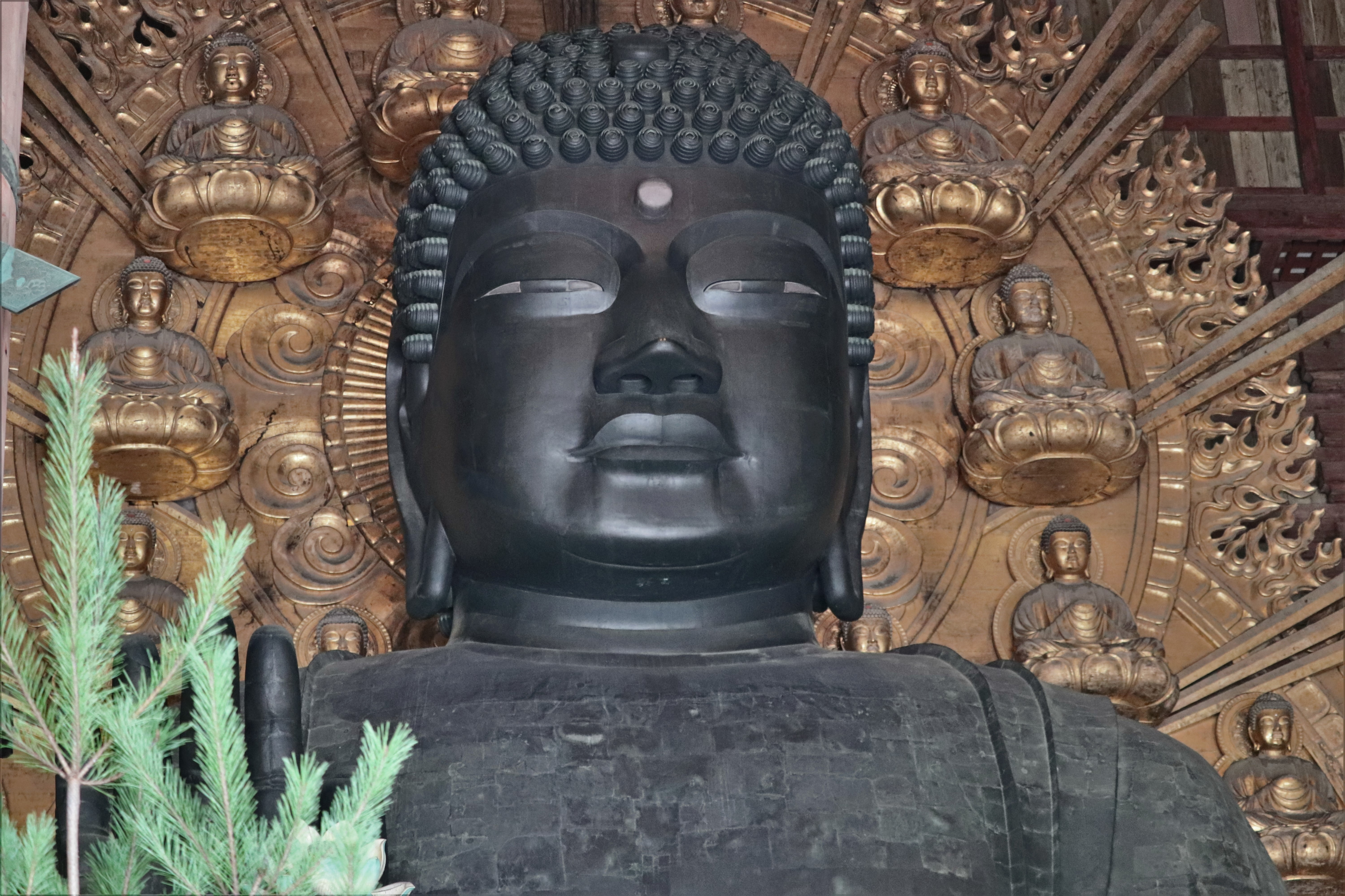 the face of the daibutsu of todai-ji temple
