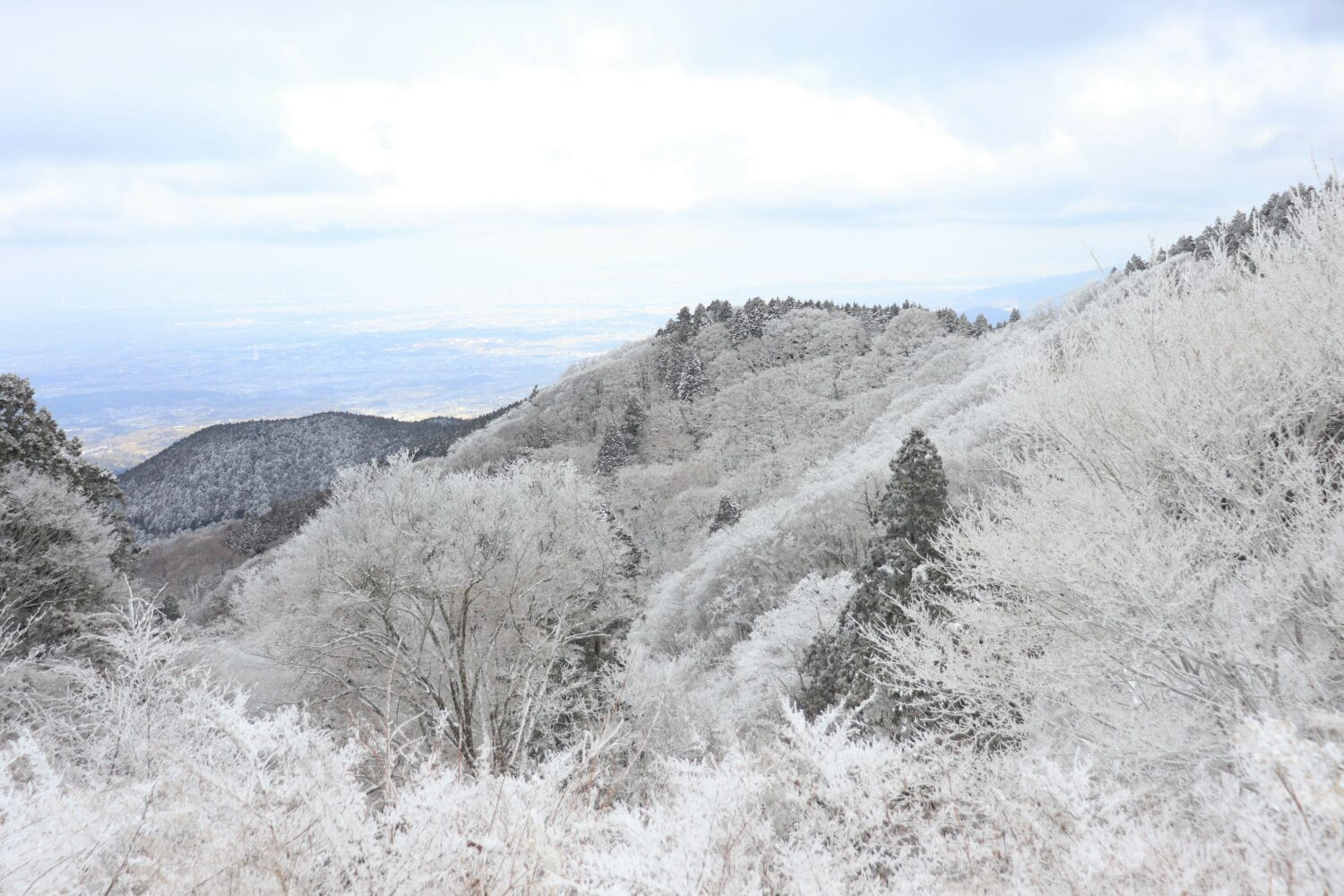 Mount Kongo, Kansai's Snowy Escape
