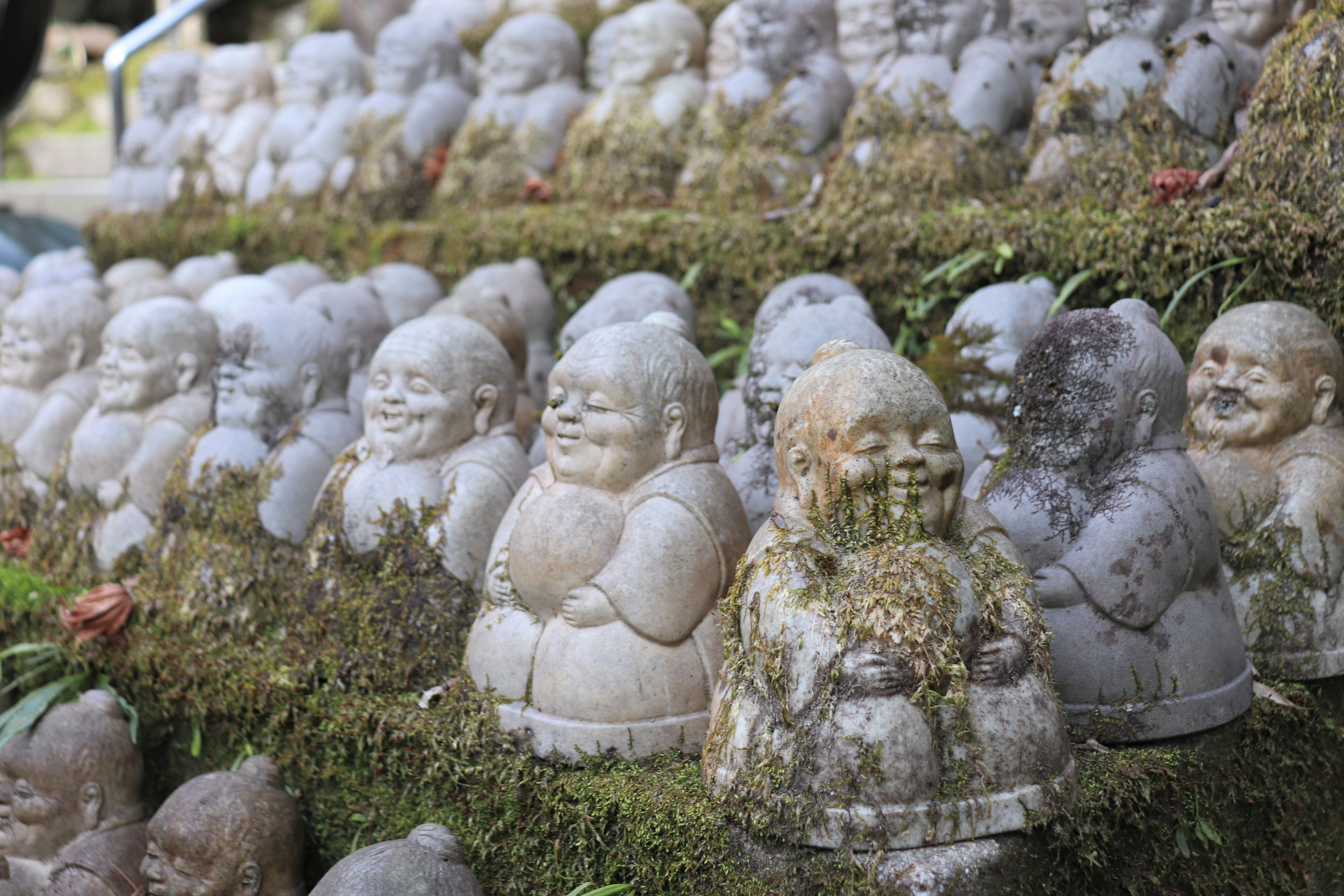 rows of small stone statues covered in moss at Imakumano Kannon-ji