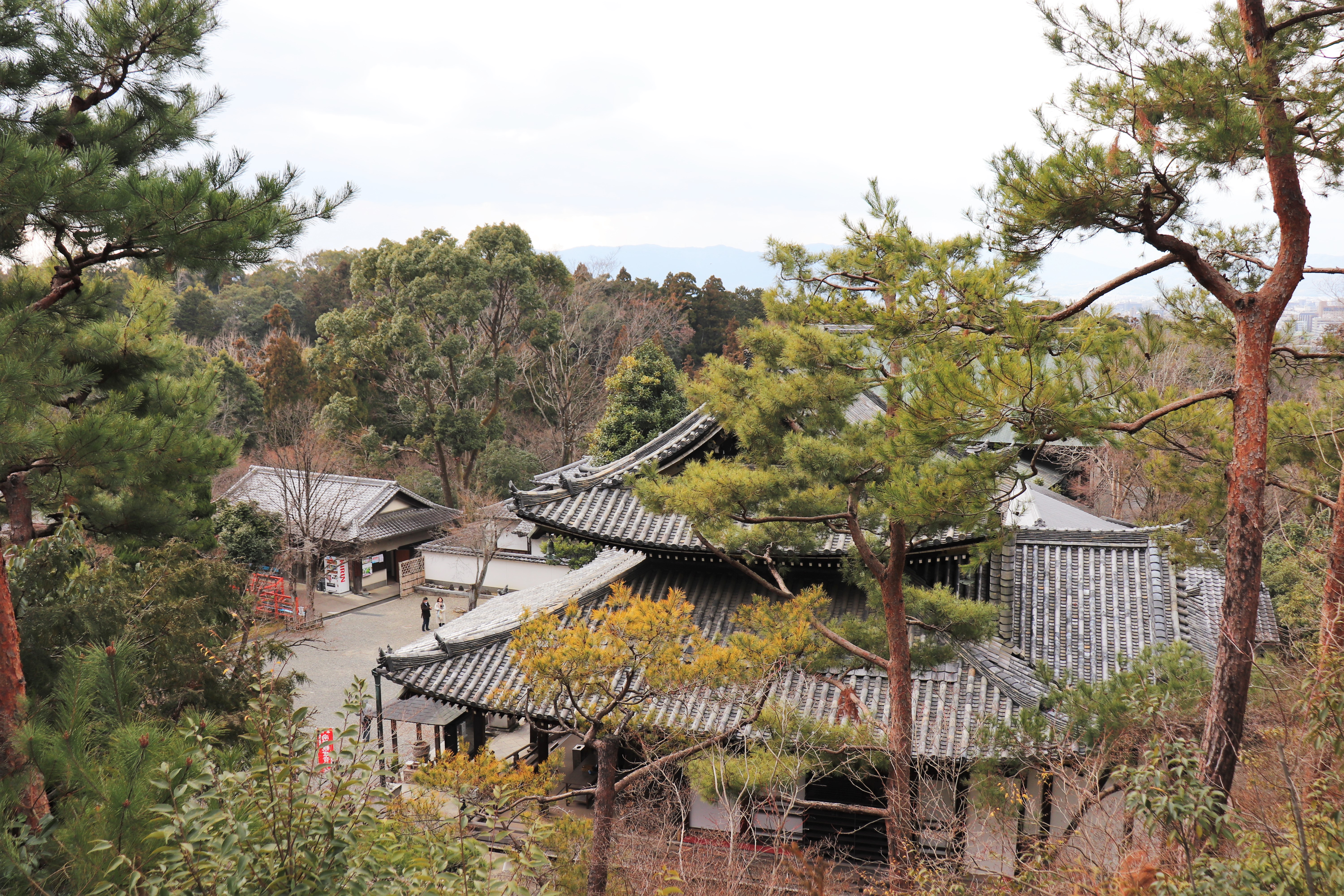 view of the temple grounds of Imakumano Kannon-ji