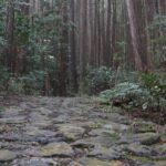 Yagyu Kaido: the Sword Master's Road in Nara