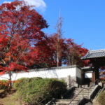 Yagyu Village: Nara's Historic Sword Master Village