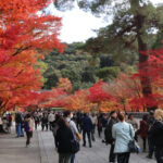 Eikan-do: Kyoto's Best Fall Spot